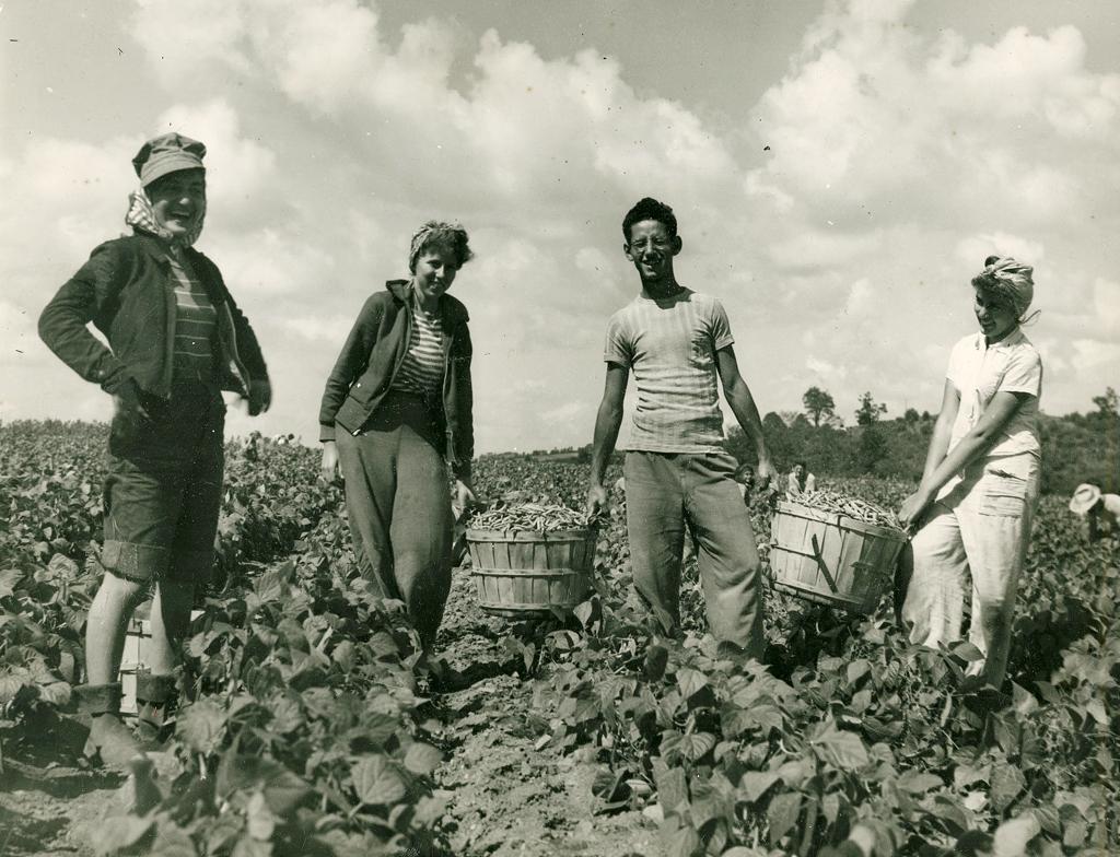 brooklyn-college-farm-students-1943